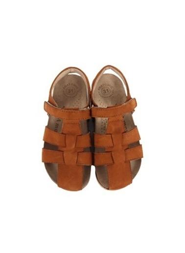 Kids A More Bangle Tek Cırtlı Deri Unisex Çocuk Sandalet   Taba